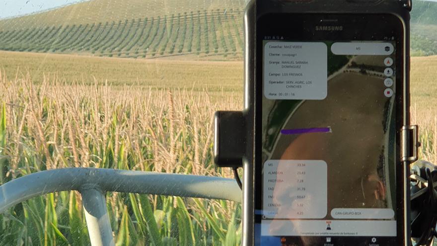 Controlan la cosecha de maíz con tecnología NIR