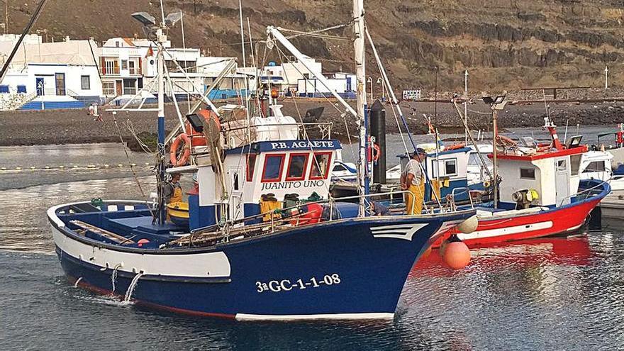 El primer atún rojo pesa 257 kilos
