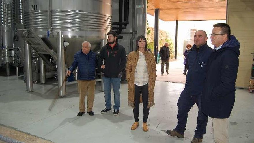 Viticultores gallegos contarán con 3,5 millones de euros para 2020-2021