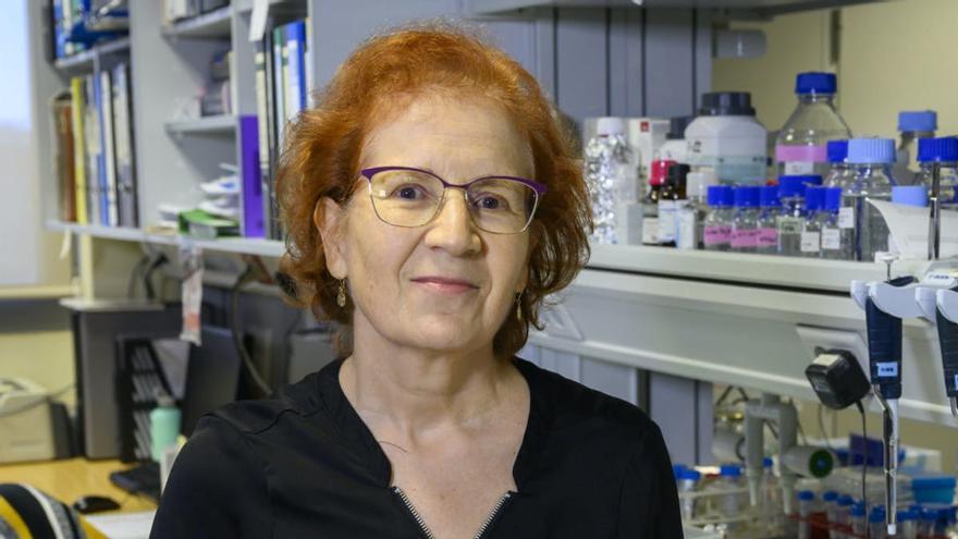La viróloga Margarita del Val: «Este virus ha venido a quedarse»