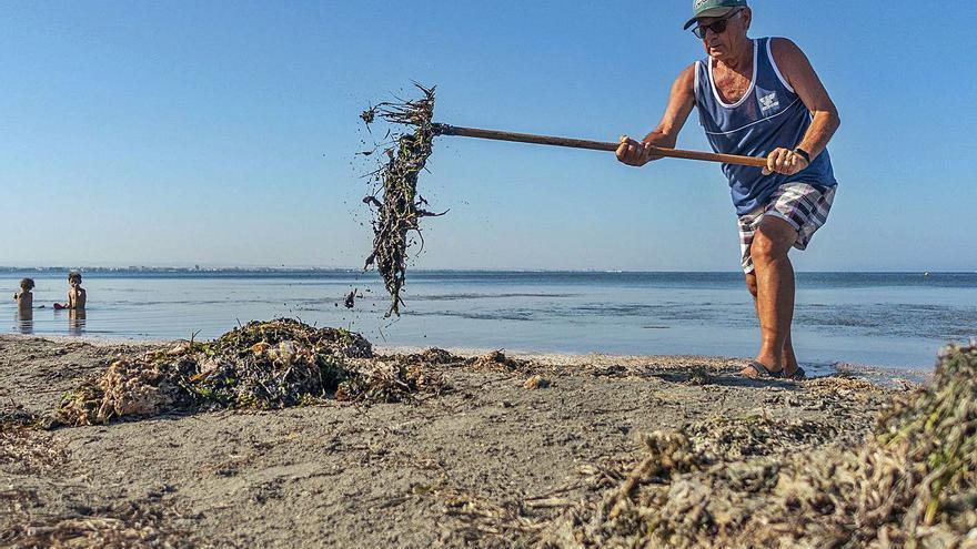 """Ángel (73 años): """"Limpio a diario de algas la 'playa abandonada'"""""""