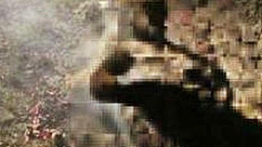 El perro calcinado en Aliste murió a golpes antes de acabar en el fuego