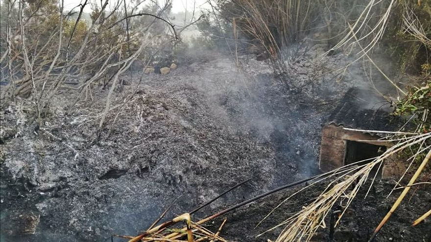 Fuego en el bosque de Ibiza por una quema descontrolada