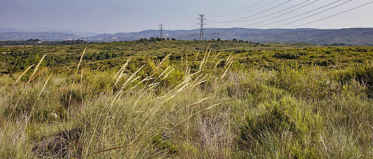 Terrenos del término de Tous en los que se proyectan las plantas fotovoltaicas. | PERALES IBORRA