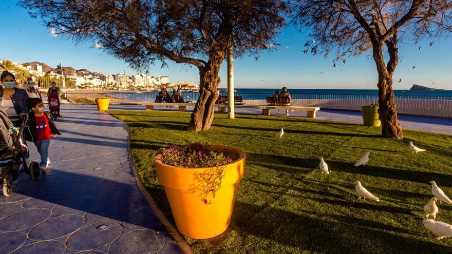 Benidorm lanza una campaña en parques y jardines: prohibido dar de comer a las palomas