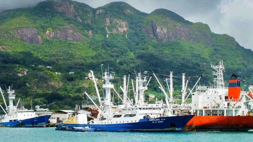 Un tercio de los atuneros reanuda la pesca en el Índico entre el rebrote de la piratería