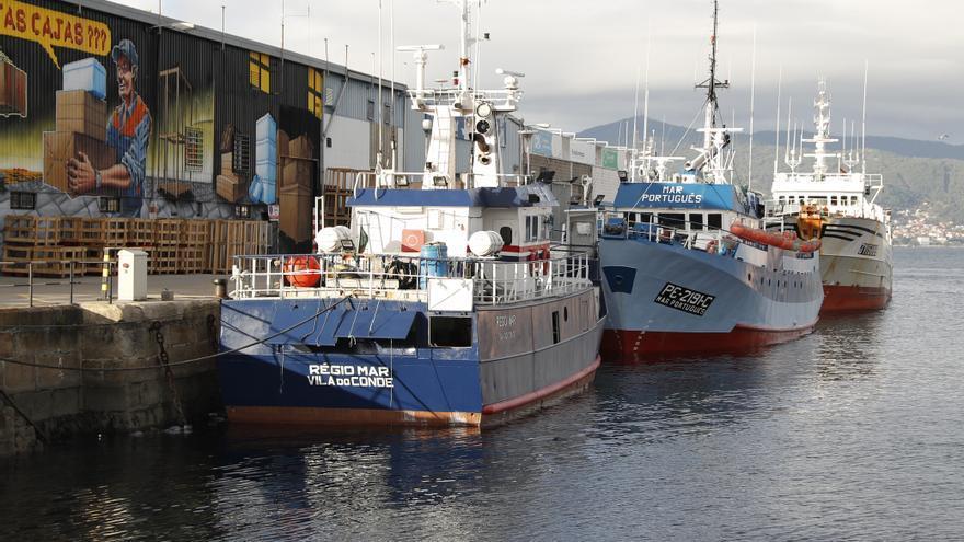 "El CSIC busca llevar el ""big data"" a la pesca"