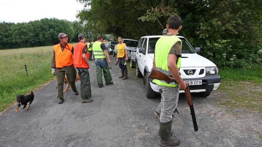 Los cazadores podrán moverse por toda Galicia para cazar lobo o jabalí al margen de las restricciones
