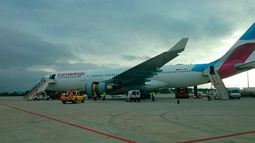 Una liebre en un motor obliga a regresar a Palma un avión que volaba a Núremberg