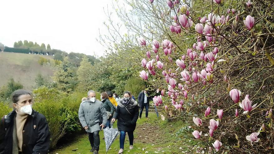 El bosque-jardín de Luarca ampliará el horario y será visitable doce horas al día