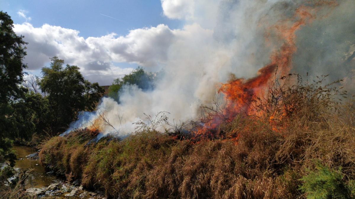 Las llamas avanzando junto al cauce del río en Elda.