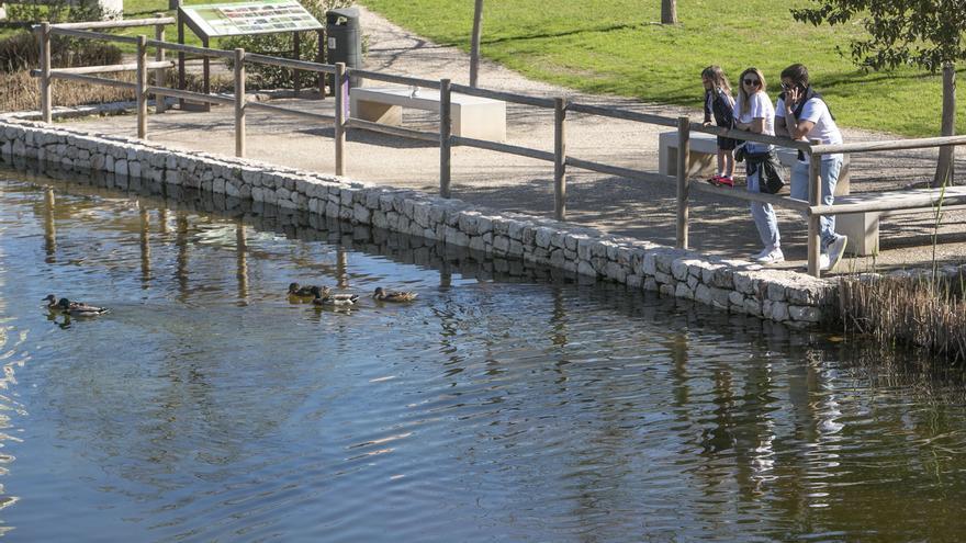 Los 5 mejores parques de la provincia de Alicante en los que disfrutar de un picnic