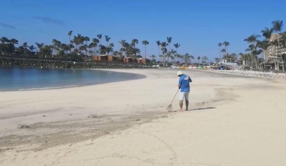 Desescalada en Canarias   La playa de Anfi del Mar abre con la fase 2