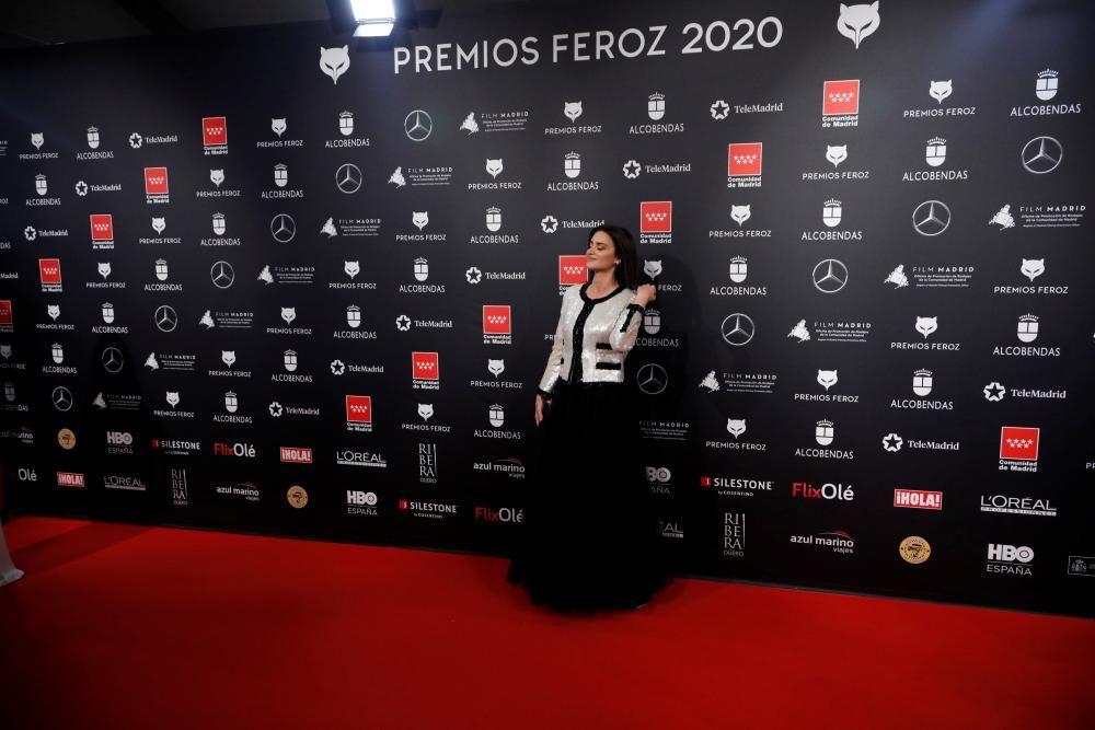 Alfombra roja de los Premios Feroz.