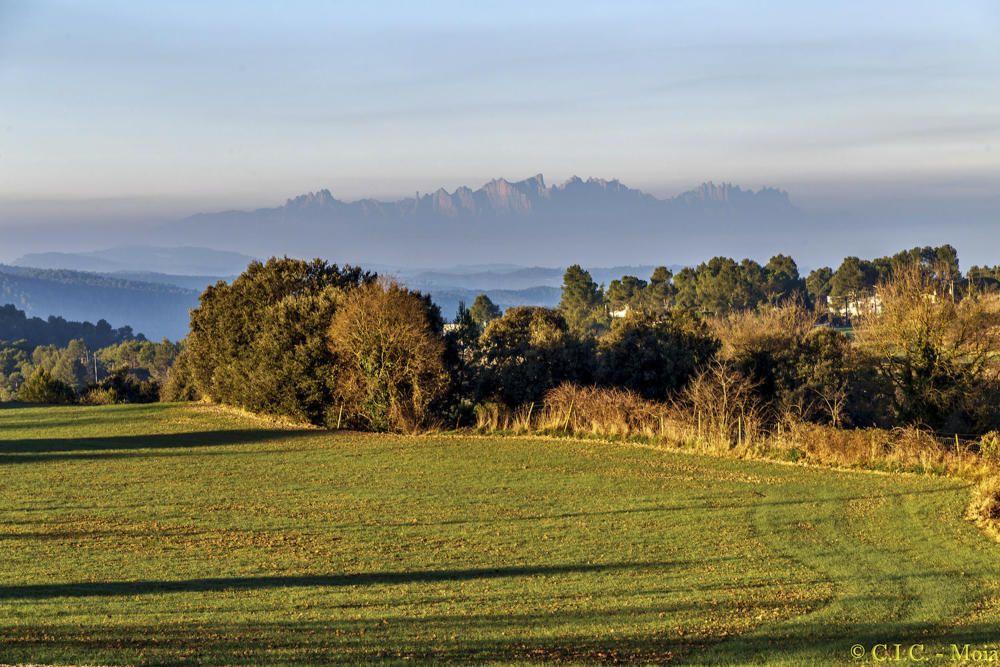 Sortida del sol. Començament del dia des del Moianès, on podem veure com els primers rajos del dia il·luminen els arbres i el camp, amb les muntanyes de Montserrat de fons, tapades per la boira.