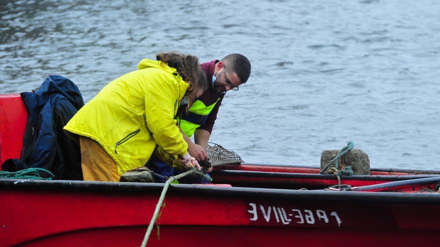 La pesca de lamprea en Pontecesures