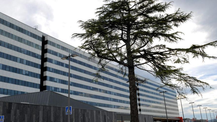 Cardiología, la especialidad con más tirón en Asturias en la elección de plazas MIR