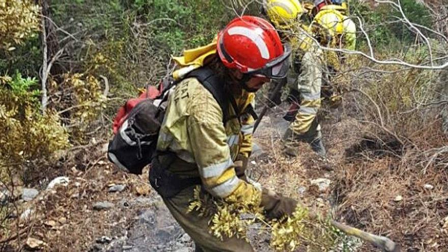 Un incendio en Benimantell arrasa 100 hectáreas de arbolado