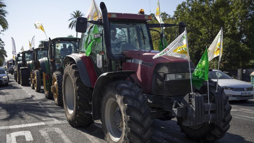 Las organizaciones agrarias exigen una «PAC justa» para Andalucía