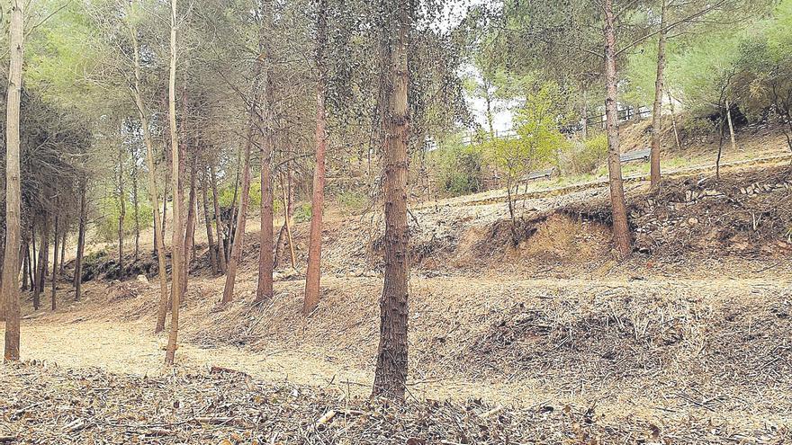 Cortafuegos verdes para proteger al Parc Natural y la Vallesa