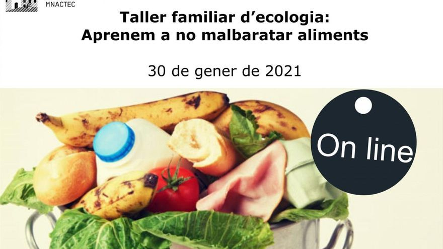 Un taller en línia sobre ecologia ajuda a no malbaratar aliments