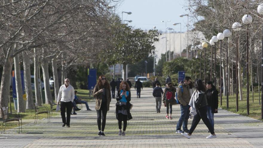 La UA y la UMH se sitúan entre las 900 mejores universidades del mundo