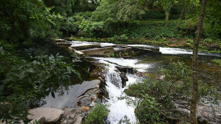 Miles de toneladas de fertilizantes acaban al año en los ríos gallegos