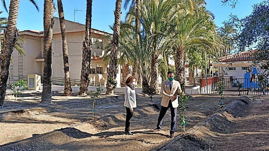 Orihuela convierte un solar destrozado por la DANA en un huerto escolar
