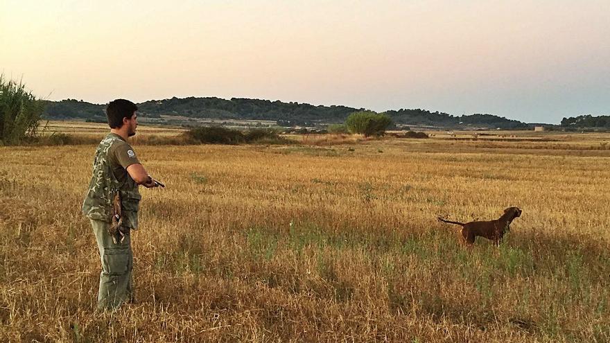 La temporada de caza 2020-2021  en Mallorca ha sido «buena»