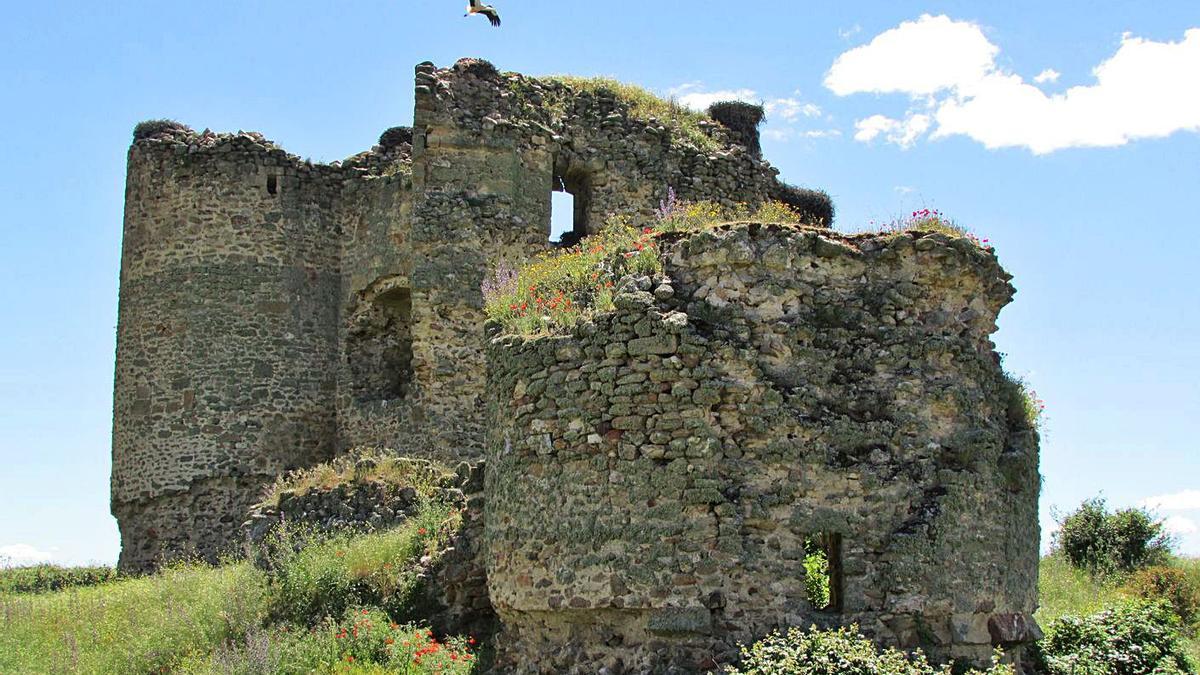 Arriba, los pocos restos que quedan en pie del Castillo de Asmesnal, custodiado por las cigüeñas. A la izquierda, ruinas de la cúpula. | D. M.