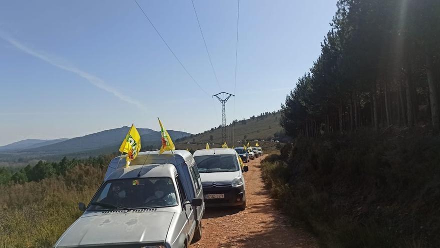 """Una manifestación por la Sierra de la Culebra """"interrumpe el sueño del lobo"""" en Zamora"""