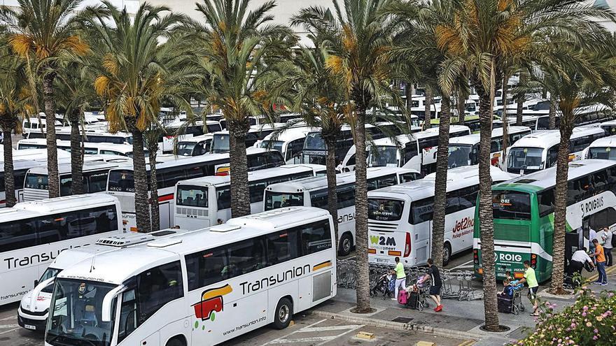 Unos 1.700 fijos discontinuos  del transporte de Baleares se quedan en 'tierra de nadie' laboral