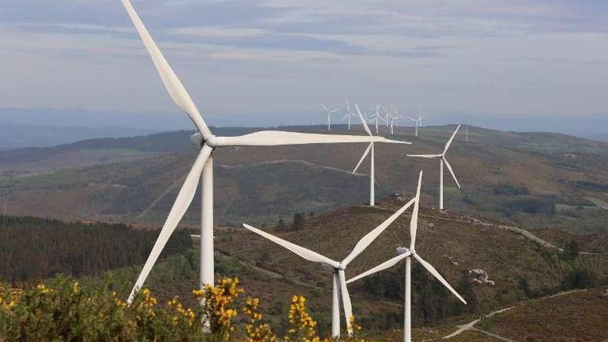 Galicia gasta su gran cartucho para reactivar el sector eólico con la subasta de renovables
