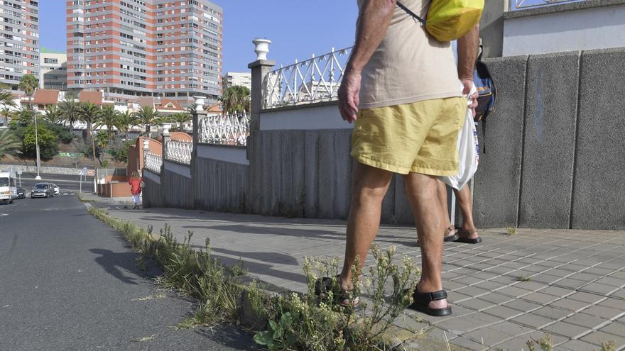 Las malas hierbas se extienden por la ciudad