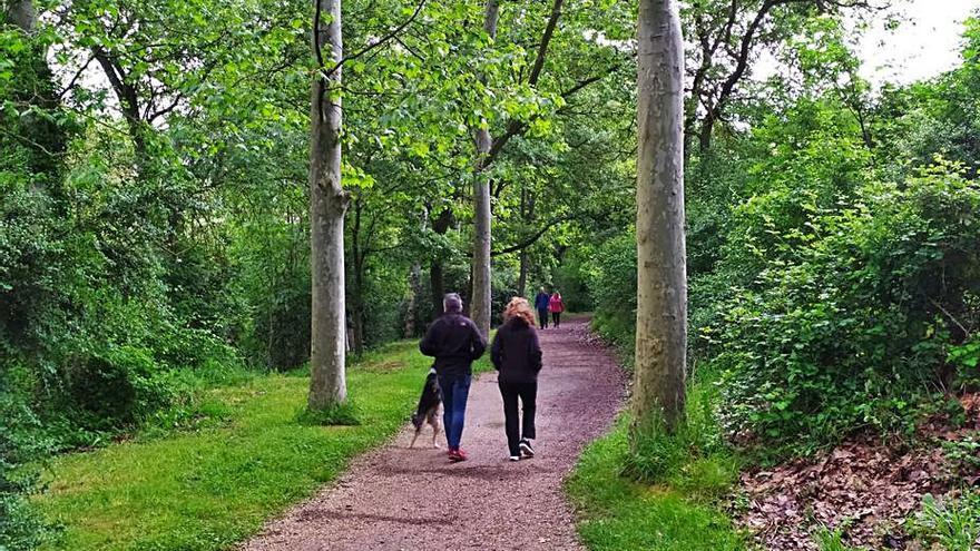 Un estudi diu que tenir accés a espais verds millora la salut cardiovascular