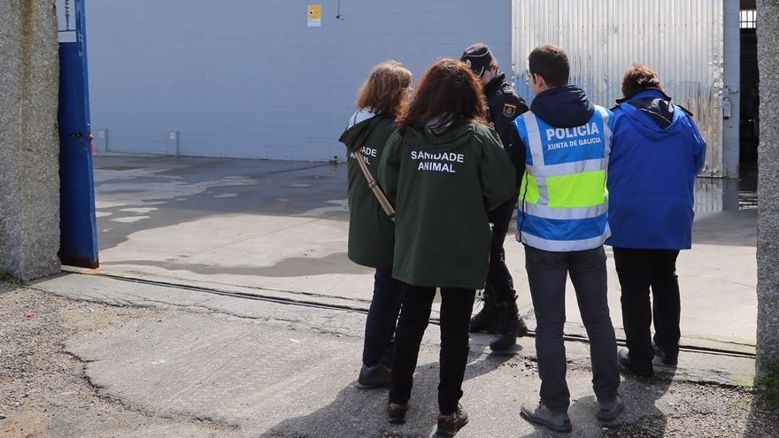 La Guardia Nacional Republicana investiga a empresas portuguesas en depuradoras gallegas