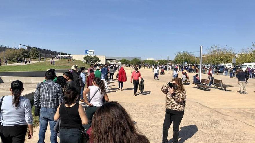 Extreman las medidas sanitarias en las votaciones bolivianas en Murcia