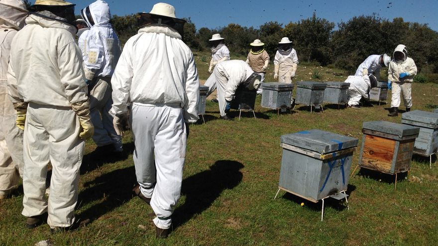 San Cristóbal acoge un curso sobre iniciación a la apicultura