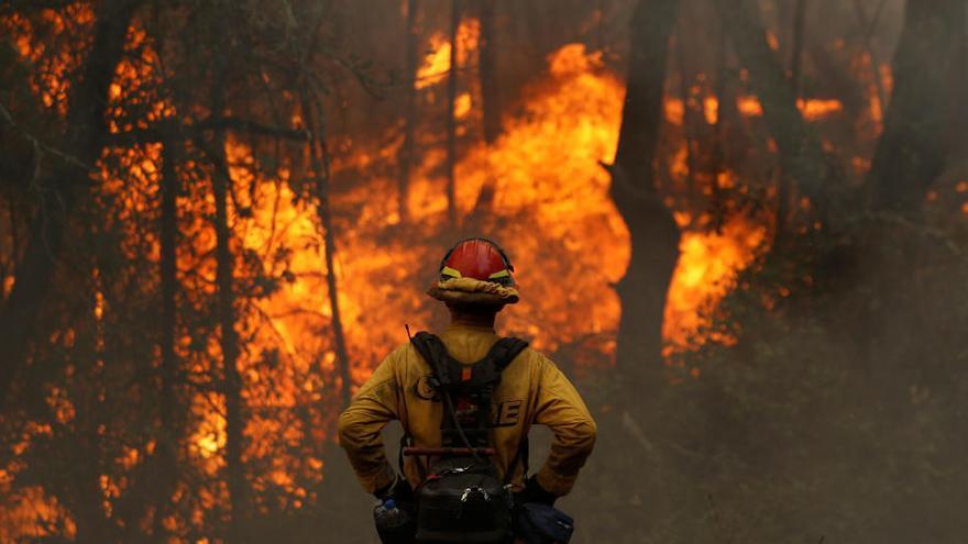 Los incendios arrasan la cifra récord de 1,62 millones de hectáreas en California