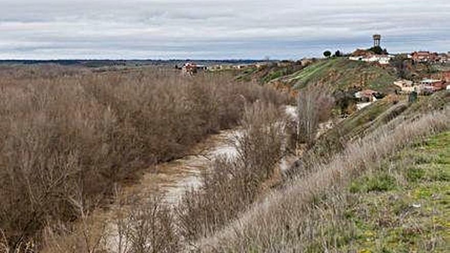 Arranca la concentración parcelaria de más de 4.000 hectáreas del Canal del Esla