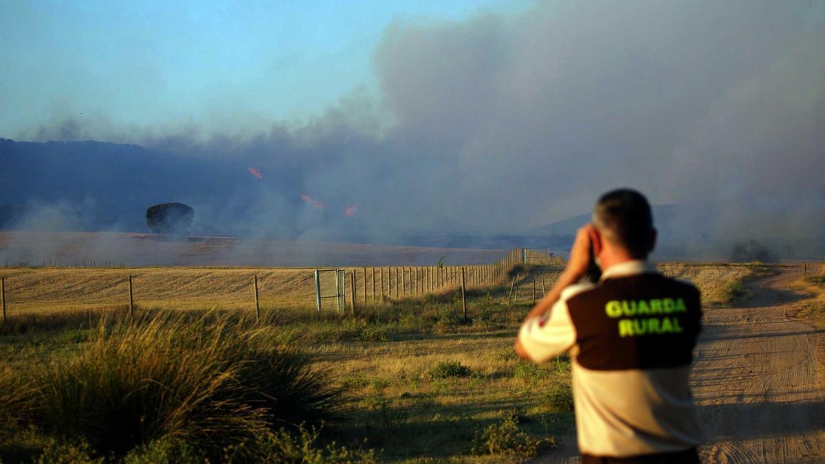 El incendio declarado durante la tarde de este domingo