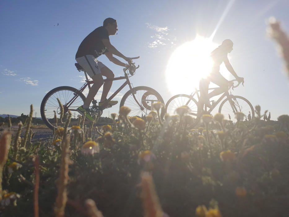 Manresa. Jugant amb les ombres de la posta de sol al parc de l'Agulla, una de les nostres lectores ha captat aquesta divertida fotografia. Fer esport durant la posta de sol pot ser gratificant.
