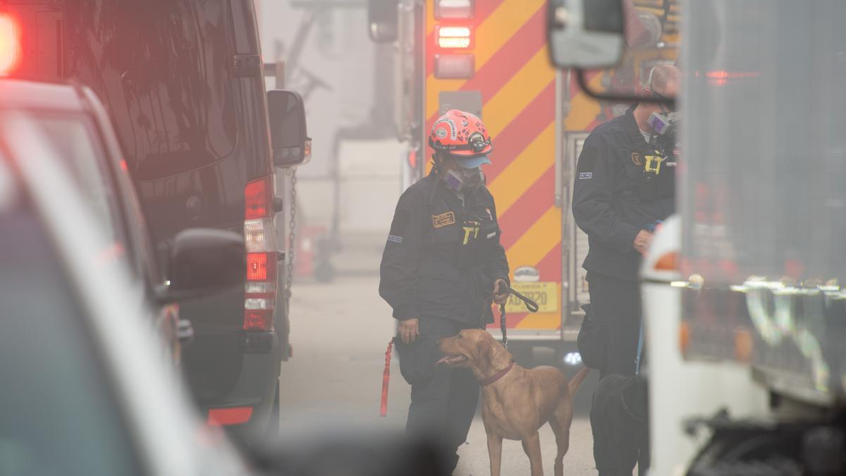 Tareas de rescate en el edificio derrumbado en Miami.