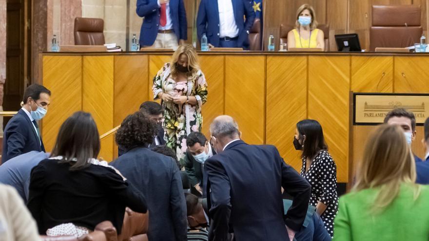 Una rata irromp al Parlament Andalús