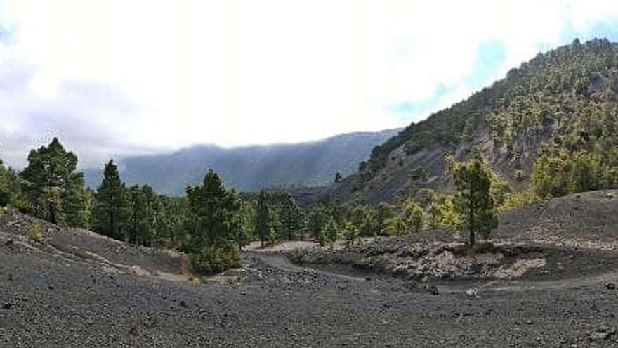 Más de 1.500 sismos en Cumbre Vieja activan la prealerta por riesgo volcánico