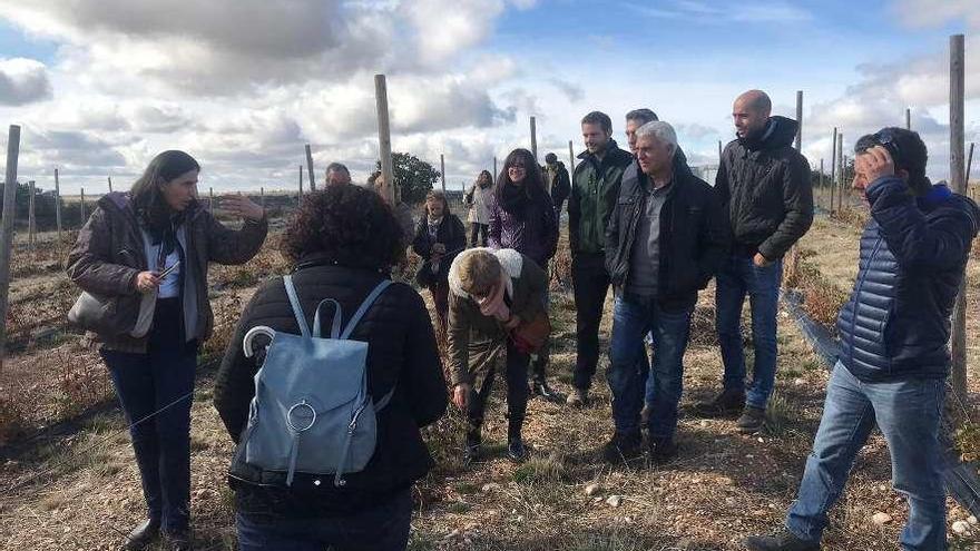 Visita a explotaciones de ecológico de Miranda do Douro