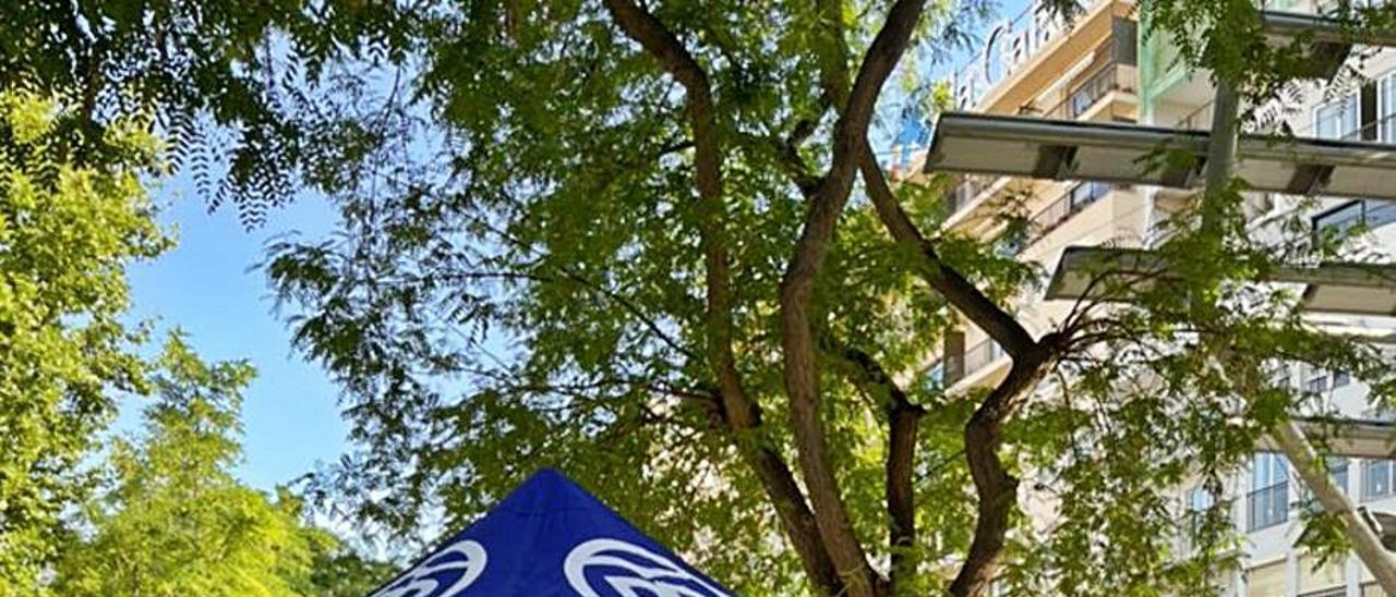 Carpa instalada por el PP en el paseo de Vara de Rey.   PP