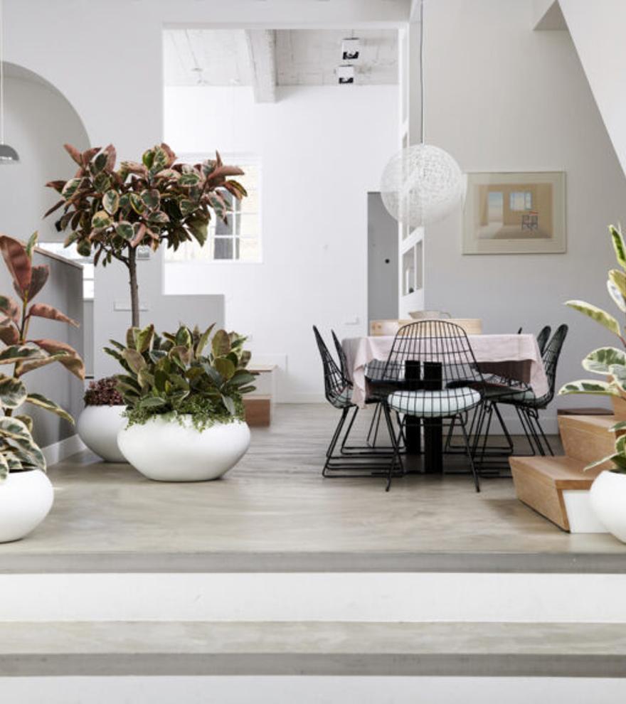 ¿Cuáles son los diez aspectos clave para tener una casa sostenible?