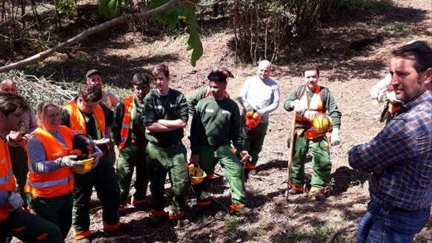 Actuaciones de 'Foresta Lalín' en Moa y A Xesta