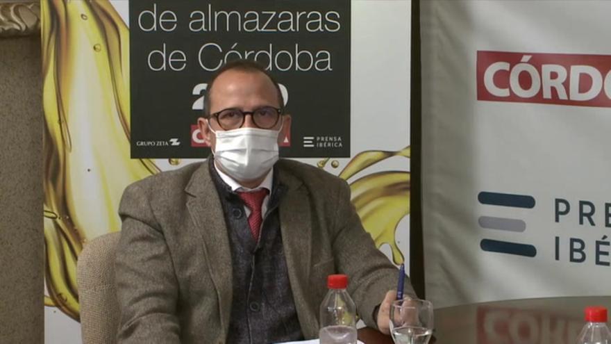 El futuro del olivar, a debate en Diario CÓRDOBA